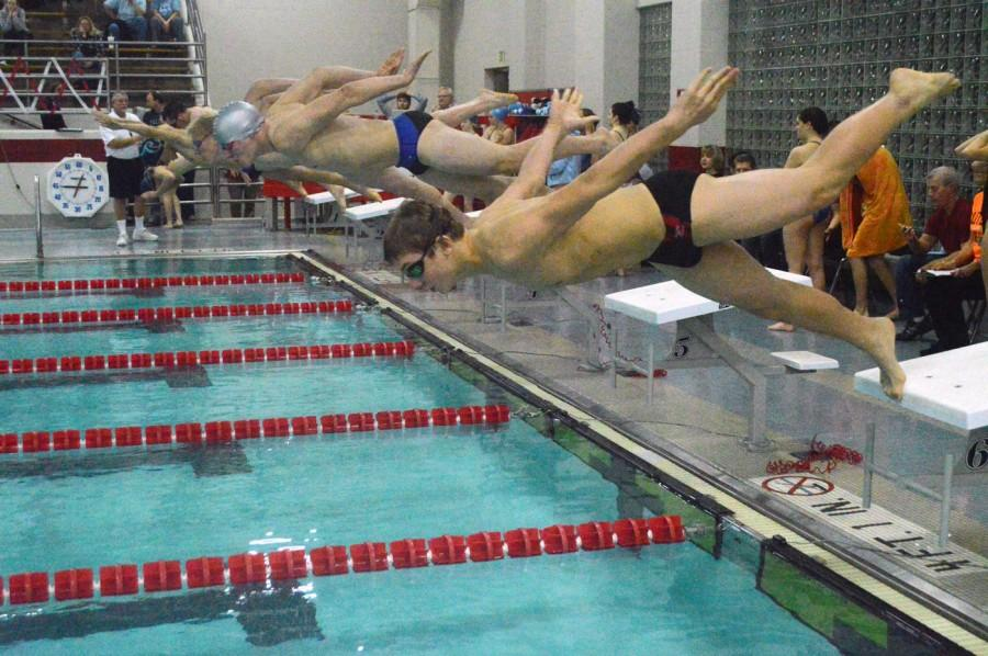 Swimmers+dive+into+the+pool+against+Perry+Meridian.+