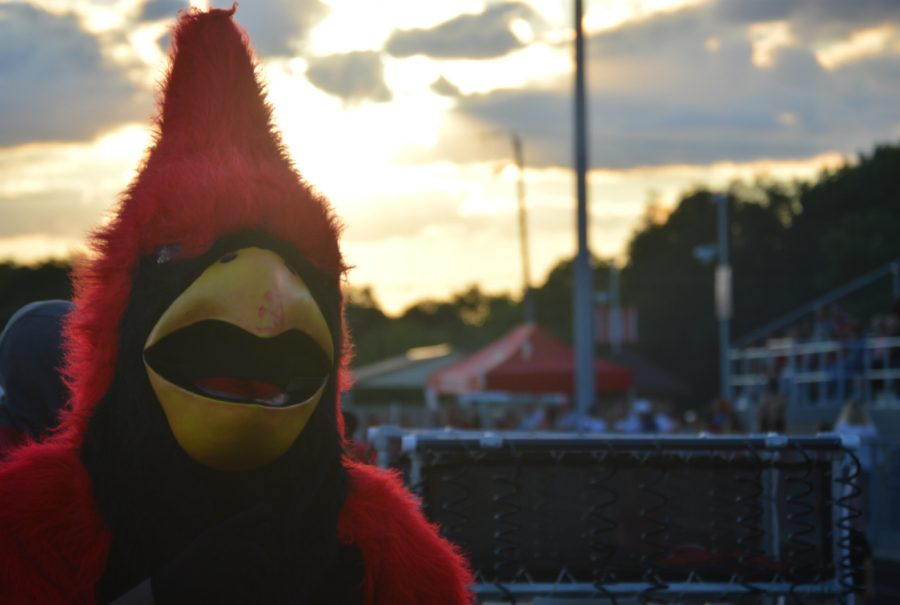 The Cardinal stands on the sideline at the Perry football  game on Sept. 2.