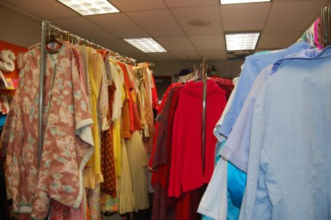 Beauty and the Beast costuming challenge