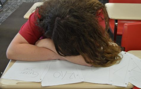 AP student sleeps and succeeds
