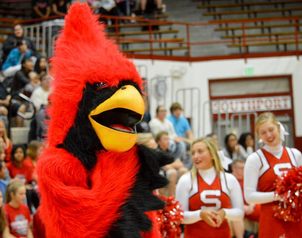 The+SHS+cardinal+greets+seniors+at+the+end+of+the+cheer+tunnel+at+the+Fall+pep+session+on+Friday%2C+Sept.+1.+The+pep+session+occurred+before+the+football+game+against+Perry+Meridian.+