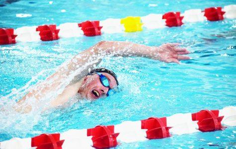 SHS swim team looks forward to next season