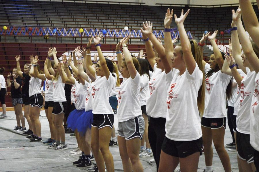 Dancers practice the line dance during one of their rotations. Each year, a new line dance is created. The song to it consists of small clips from multiple well-known songs and vines. SHS' RDM has different committees dedicated to carry out various responsibilities during the year. The morale committee teaches the dance to dancers during rotations. Then, at the very end of the marathon, everyone does the line dance together.