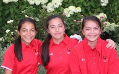 The Chan trio