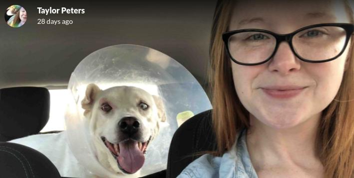 SHS+teacher+rescues+stray+dog