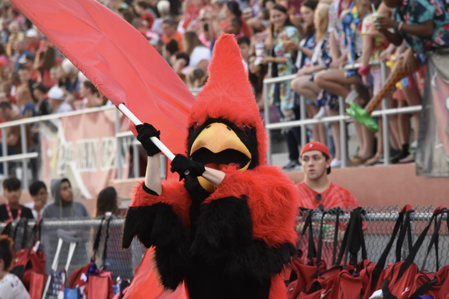 The current Cardinal waves the SHS flag at a football game. The Cardinal represents our school spirit.
