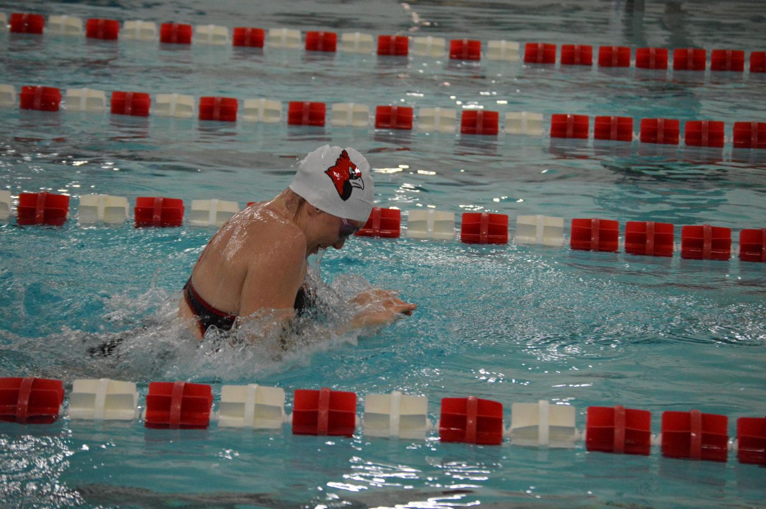 Senior Liz Lamkin swims her leg in the 200-yard medley relay on Dec. 1 in the Cardinal Classic. The girls team placed first out of the eight teams competing.