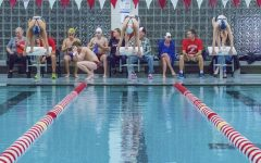 Girls swim team takes on sectionals after successful season