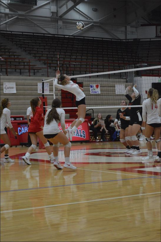 Senior Lauren Cullsion prepares to spike against the Beech Grove Hornets on Sept. 23. Cullison finished the game with 24 kills