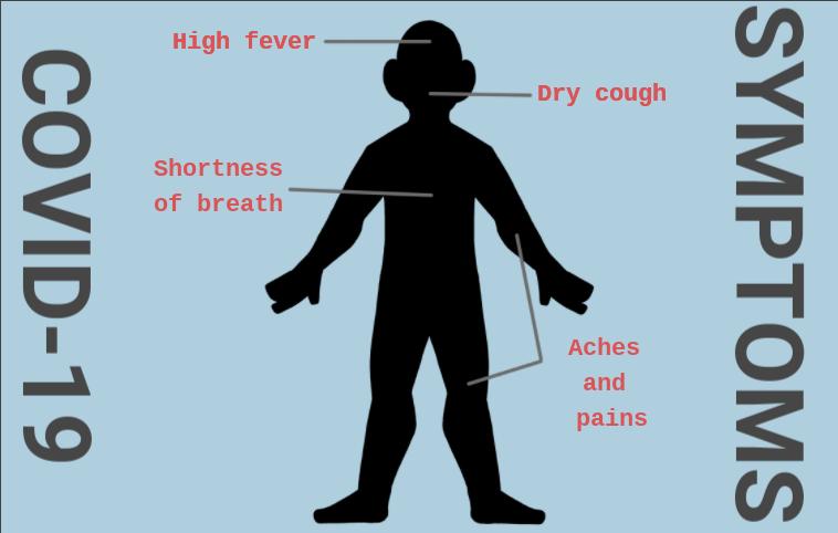 Coronavirus%3A+fact+vs.+fiction