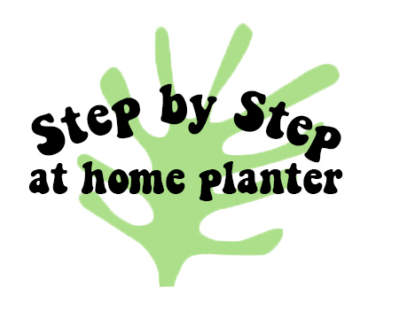 Step by step at home planter