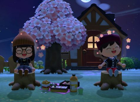 Animal Crossing: New Horizons features an easily accessible multiplayer feature. Players can now visit their friends