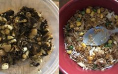 Laphet Thoke (left) is a fermented tea leaf salad. Fried Rice (right) is a dish customizable for many preferences.